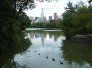 central park skyline