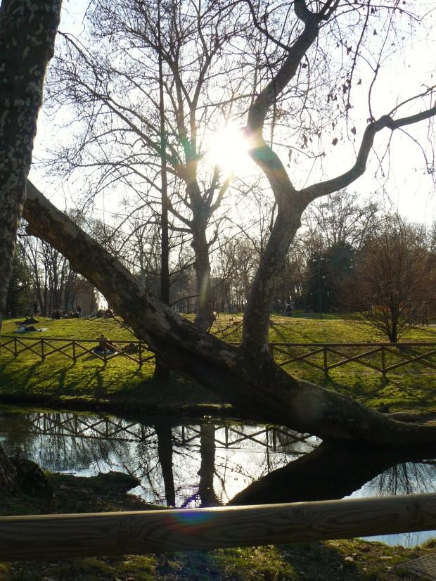 milan-sempione-park-lake