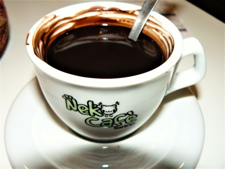 turin-cat-cafe-hot-chocolate