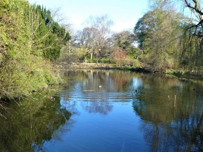 Edinburgh Botanic Gardens pond