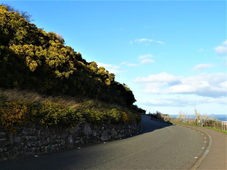 Edinburgh Queens Drive