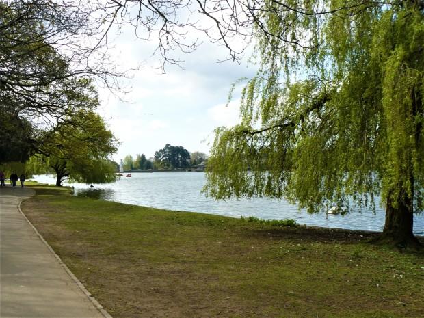 cardiff roath park lake