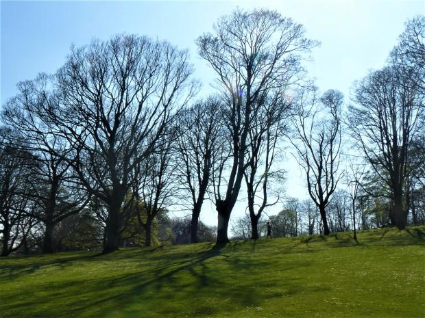 Kirkcaldy Beveridge Park 3