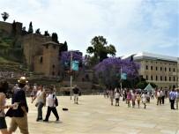 4 castillo plaza