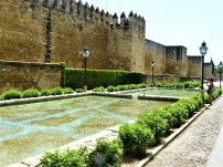 cordoba walking tour 5