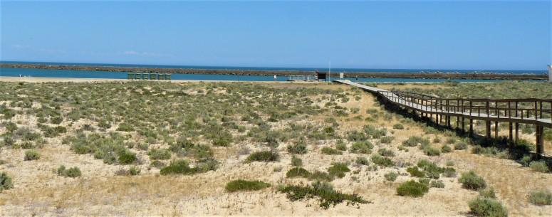 faro ilha deserta 3