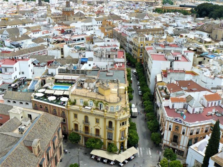 sevilla cathedral 3