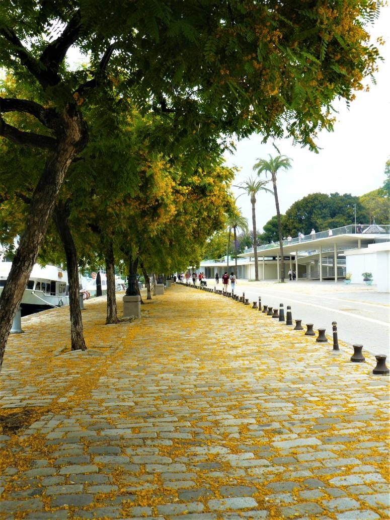 sevilla river 1