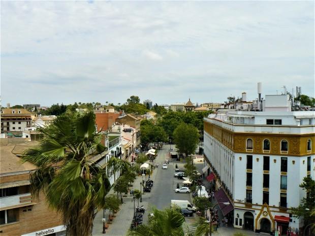 sevilla river 4