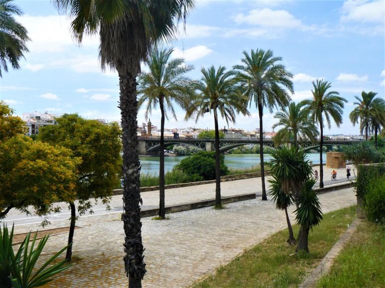 sevilla river 5