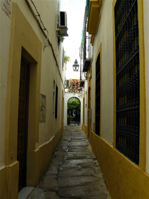 yellow cordoba street