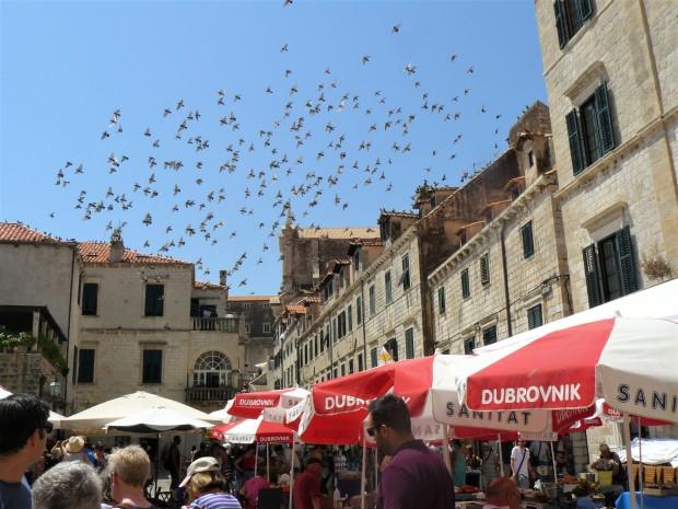 dubrovnik old town 1
