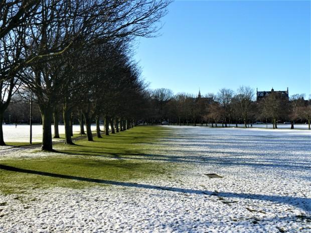 meadows snow 1