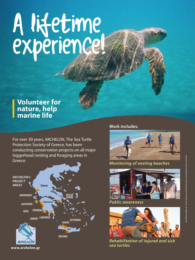 Volunteer Poster A4 ENG[469]