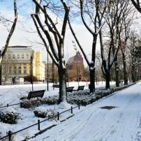 Wroclaw winter