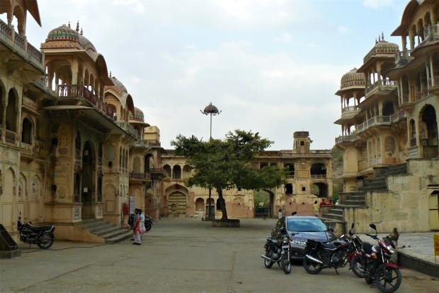 jaipur monkey temple 1