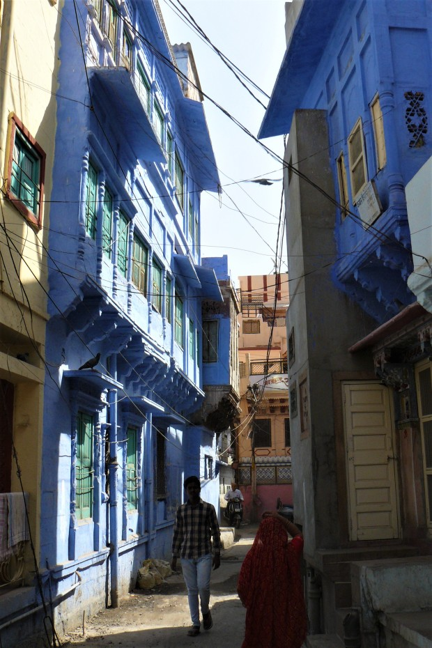 jodhpur blue city 5