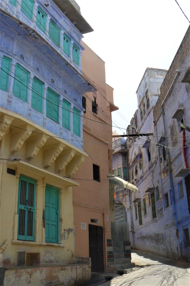 jodhpur blue city 9