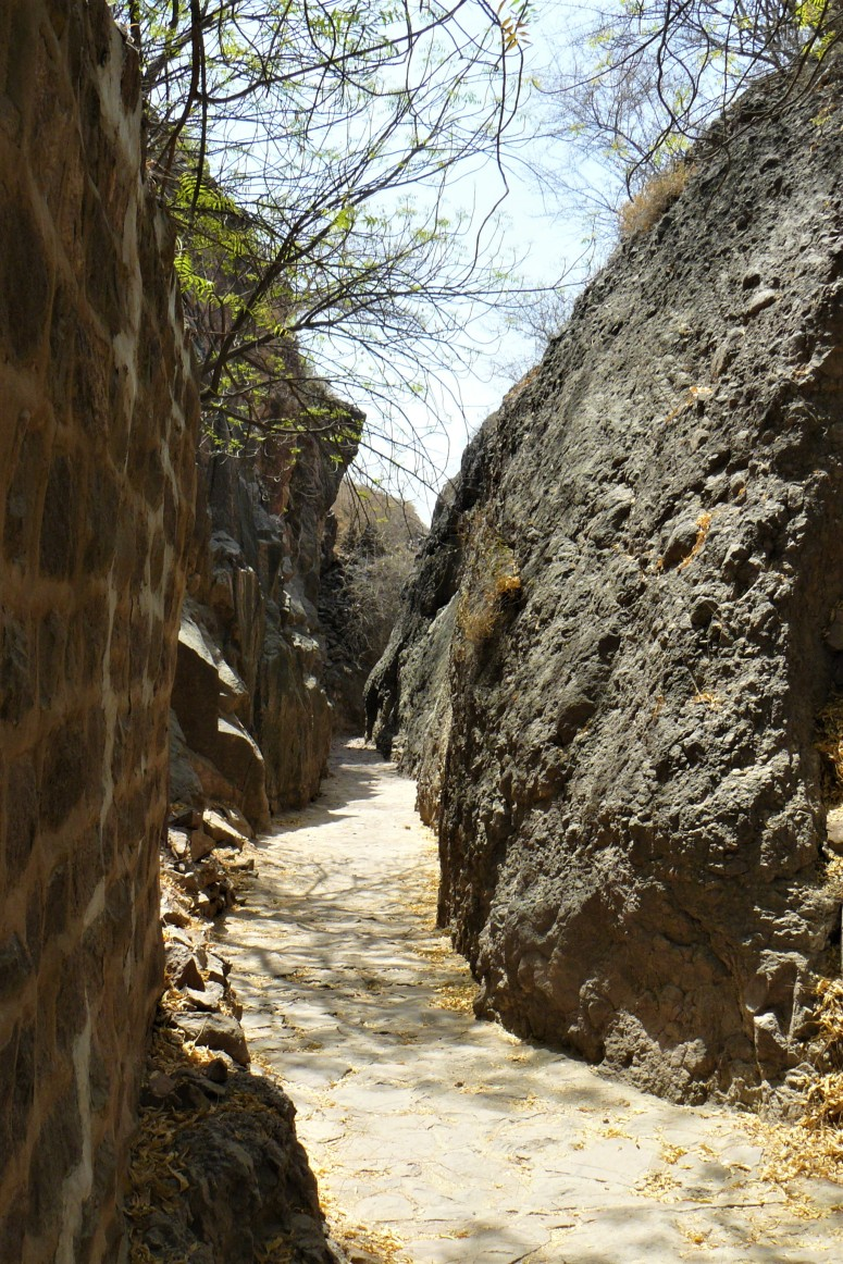 jodhpur rock garden 2.jpg