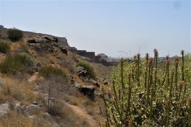 jodhpur rock garden 3