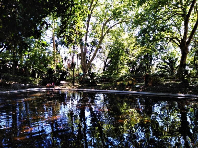lisbon botanical gardens 2