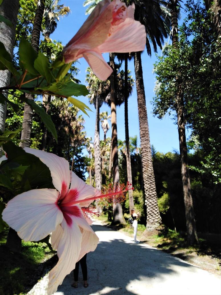 lisbon botanical gardens 4