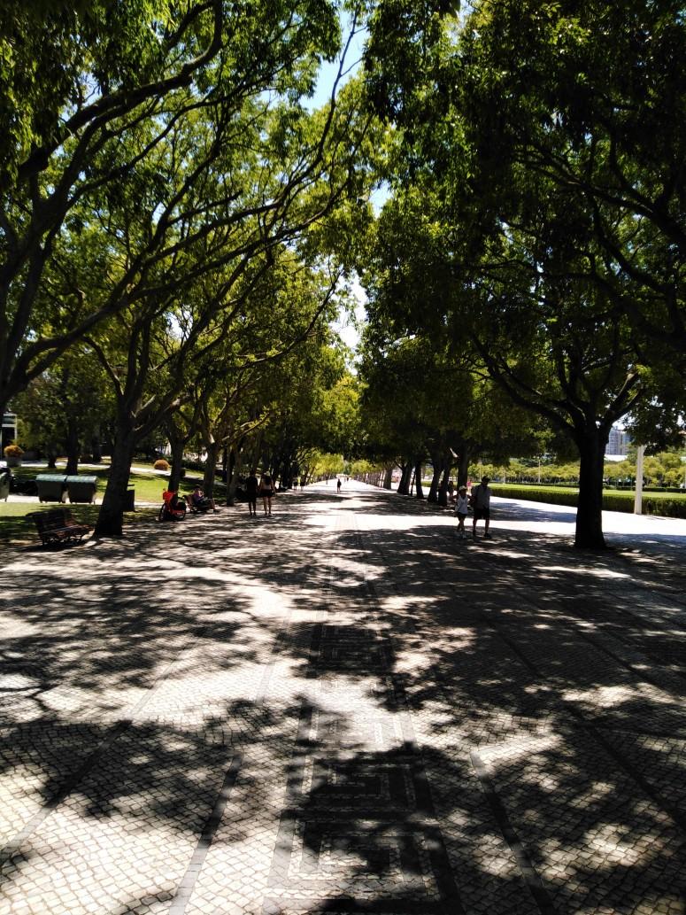 lisbon eduardo vii park 2