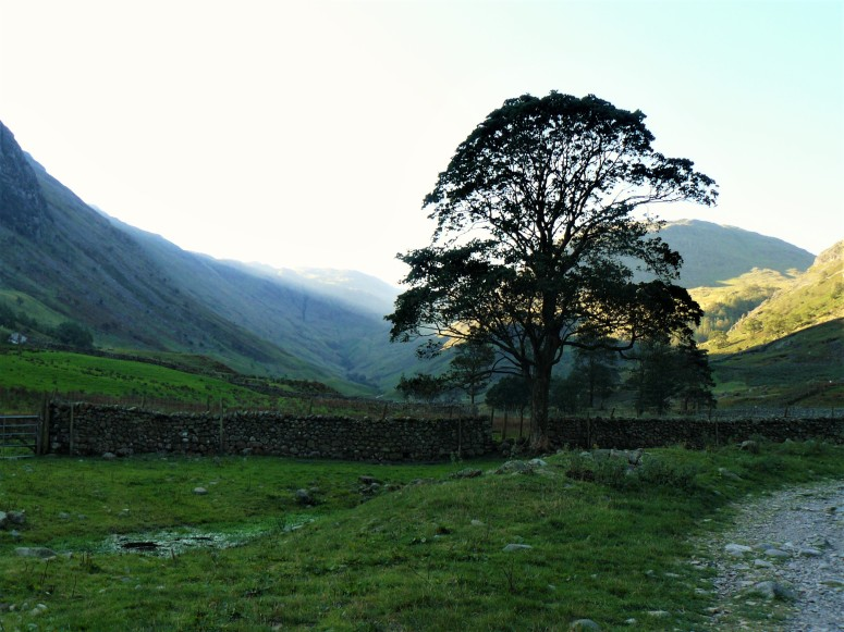 lake district morning 1