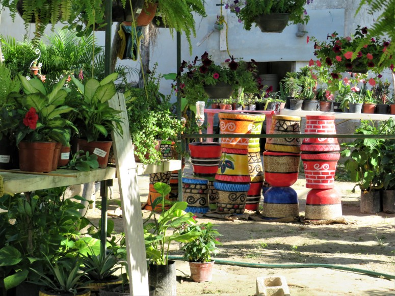 Mexico Isla Holbox 5 Town 3