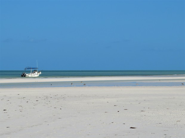 Mexico Isla Holbox 6 Beach 3