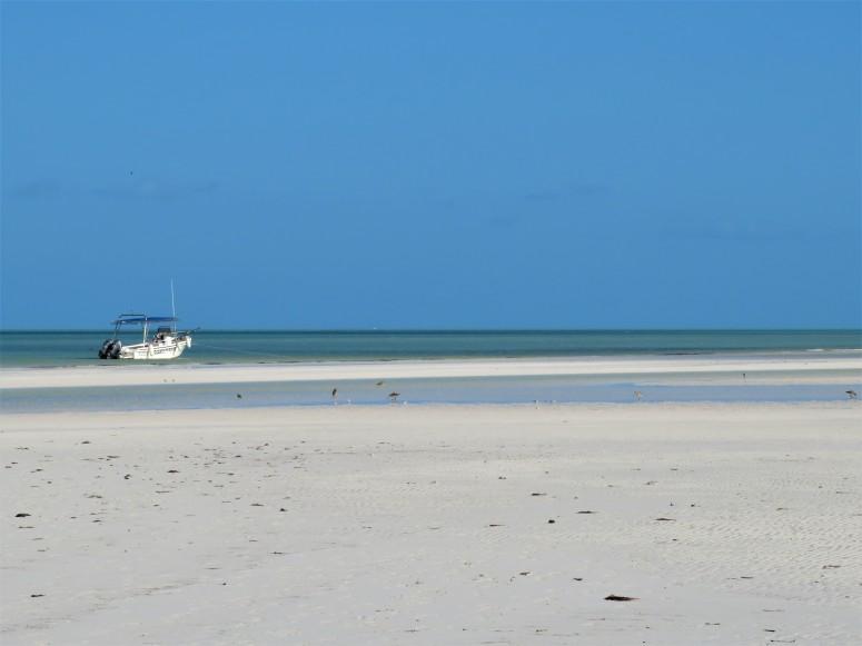 Mexico Isla Holbox 6 Beach 3
