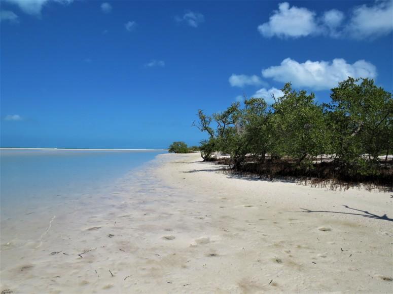Mexico Isla Holbox 6 Beach 5