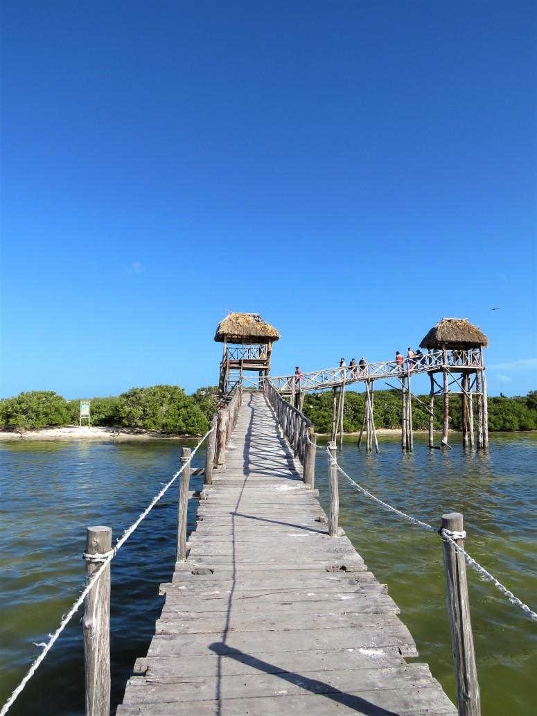 Mexico Isla Holbox 7 Island Trip