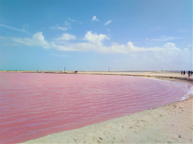 Mexico Las Coloradas 1