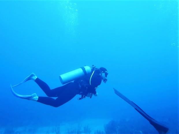 Belize Caye Caulker Diving 32