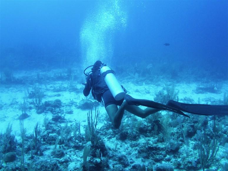 Belize Caye Caulker Diving 5