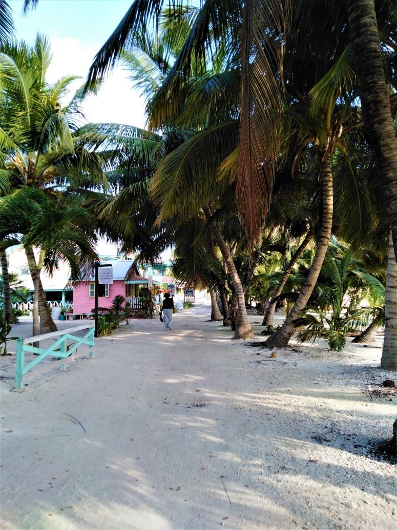 Belize Caye Caulker Island 3