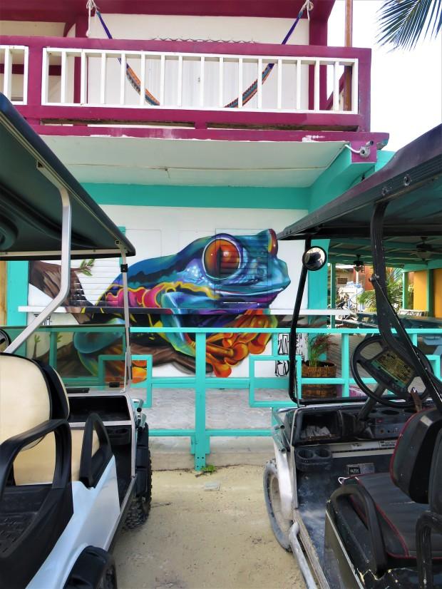 Belize San Pedro Town 1