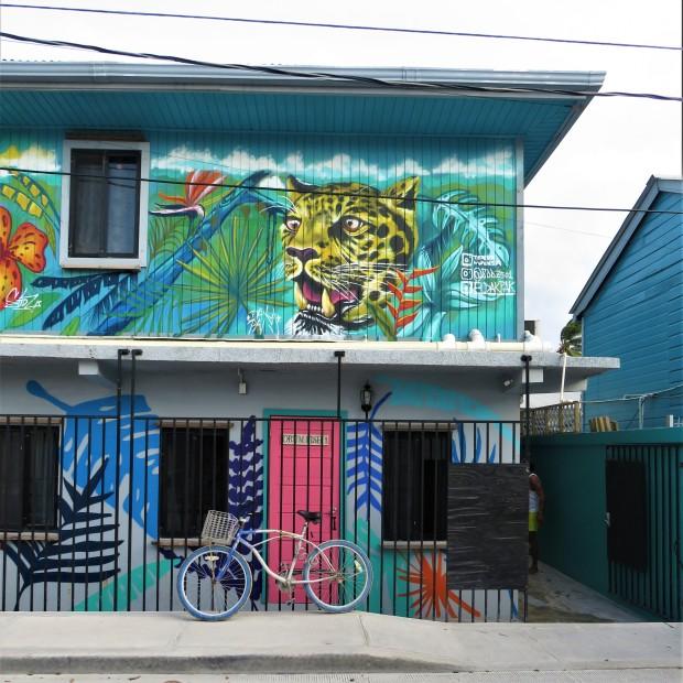 Belize San Pedro Town 2