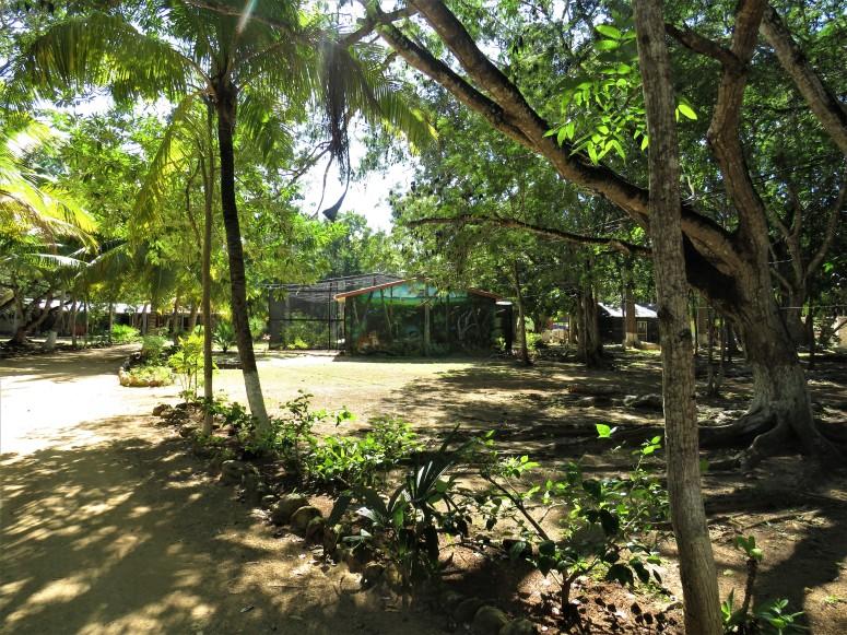 Belize Sarteneja Shipstern Nature Reserve 1
