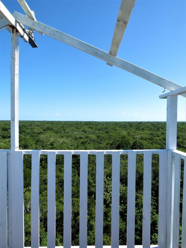 Belize Sarteneja Shipstern Nature Reserve 15