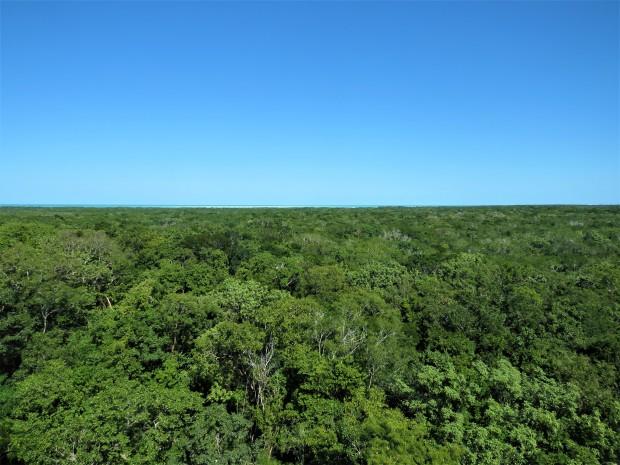 Belize Sarteneja Shipstern Nature Reserve 16