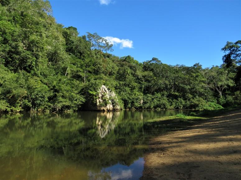 Belize San Ignacio Botanical Gardens 15
