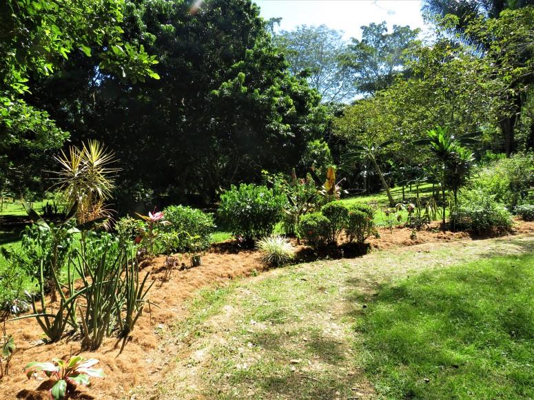 Belize San Ignacio Botanical Gardens 3