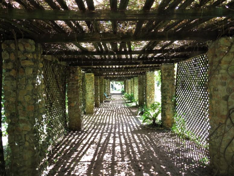 Belize San Ignacio Botanical Gardens 6