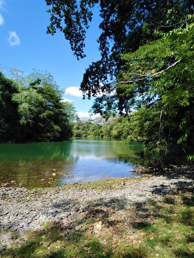 Belize San Ignacio Carmelita Gardens 10