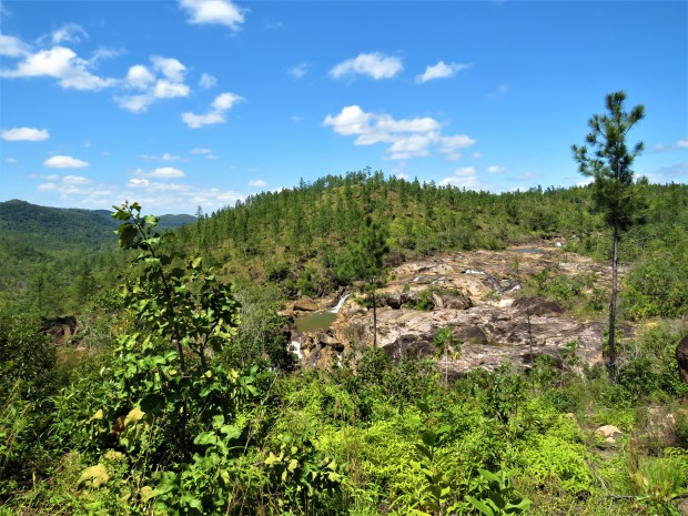 Belize San Ignacio Mountain Pine Ridge 17