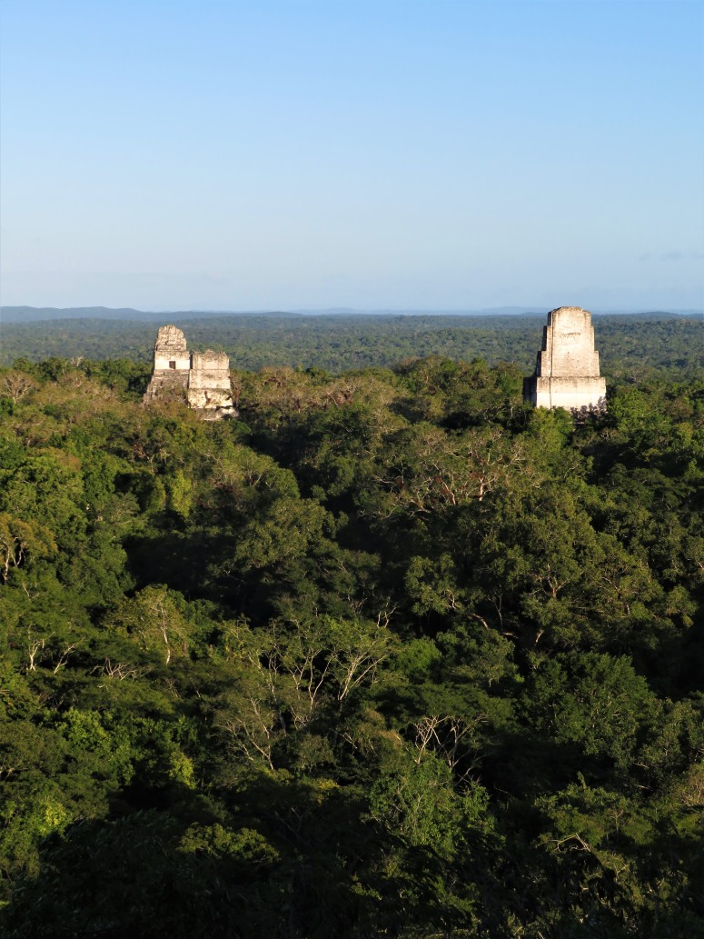 Guatemala Tikal 10