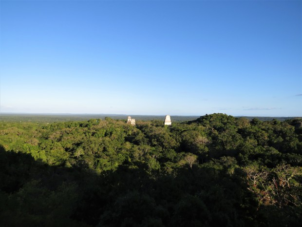 Guatemala Tikal 9